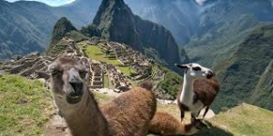 Buy Huayna Picchu student tickets online
